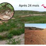 Réhabilitation écologique de la mine de bauxite de Loupian