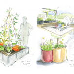EduNature : des jardins pour se reconnecter au vivant.