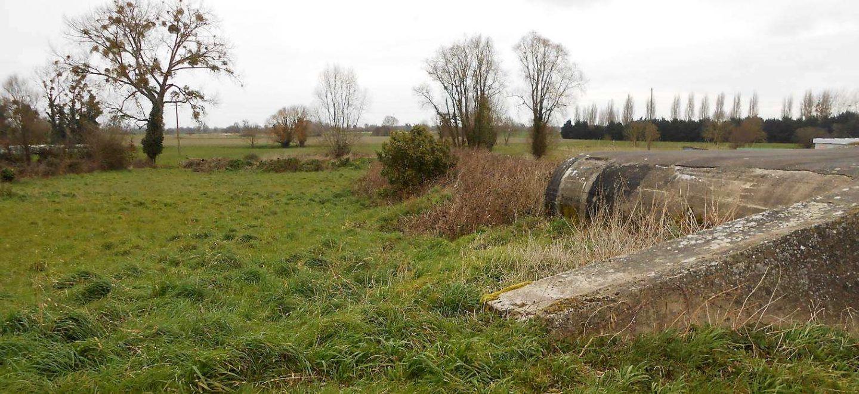 Un parc de phytoremédiation en Bretagne