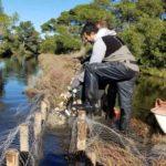 Reconquête des fonctionnalités écologiques d'un canal