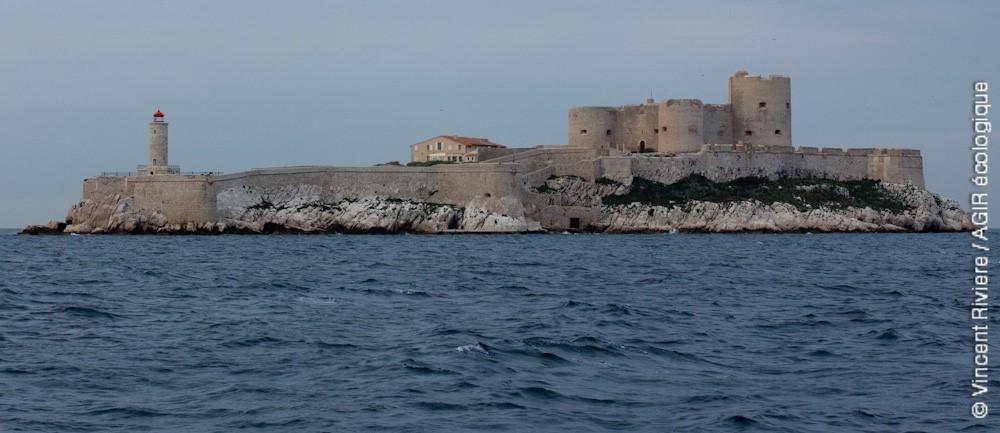 Préserver le patrimoine naturel et bâti en cœur de Parc National : le Château d'If.