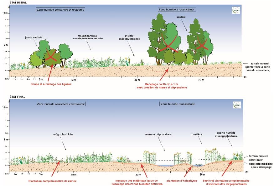 En Moselle, des travaux de génie écologique bien intégrés.