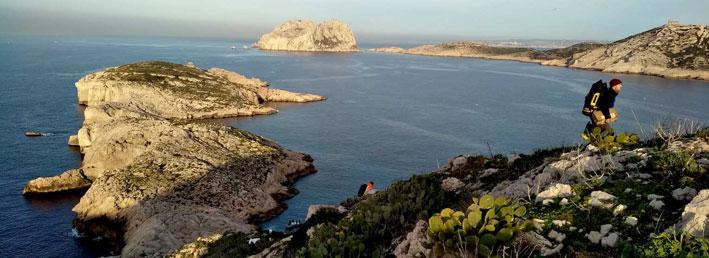 Gestion des espèces végétales exotiques envahissantes sur le littoral méditerranéen.
