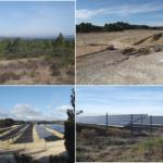 Projet PIESO : protocoles de suivis écologiques sur des centrales photovoltaïques