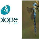 L'UPGE est heureuse d'accueillir le bureau d'études Biotope.