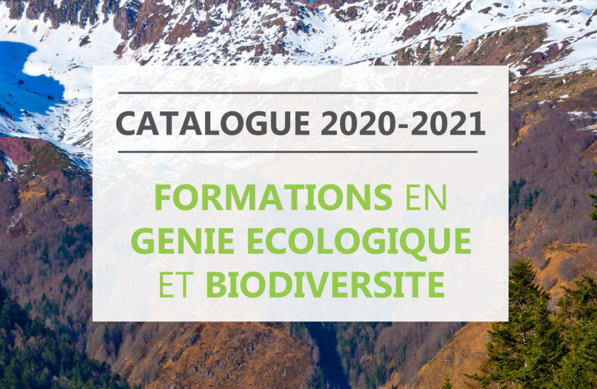 Le catalogue des formations 2020-2021 de l'UPGE est disponible
