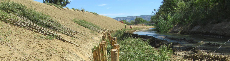 [Web-conférence] Quels défis pour les chantiers de génie écologique ?
